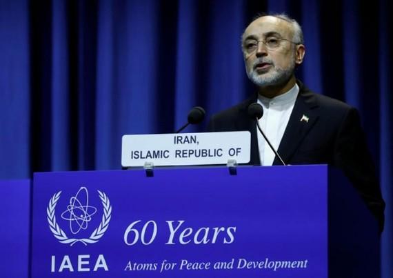 Người đứng đầu Tổ chức Năng lượng nguyên tử Iran Ali Akbar Salehi. (Nguồn: Reuters)