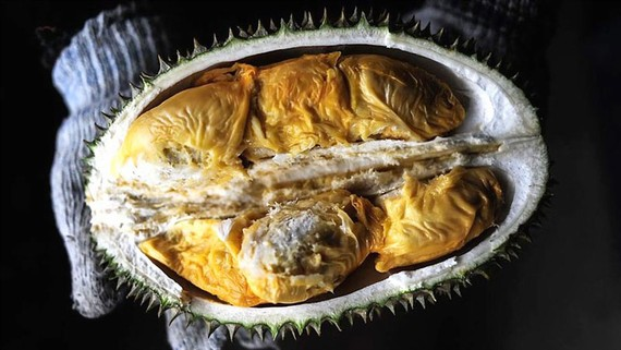 Thái Lan sẽ gửi trái sầu riêng lên không gian