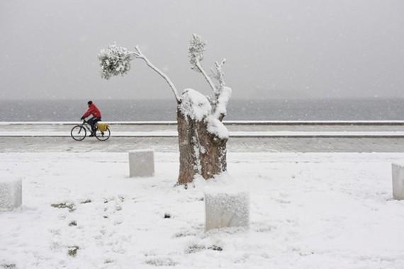 Tuyết rơi dày đặc ở Hy Lạp. (Nguồn: Reuters)