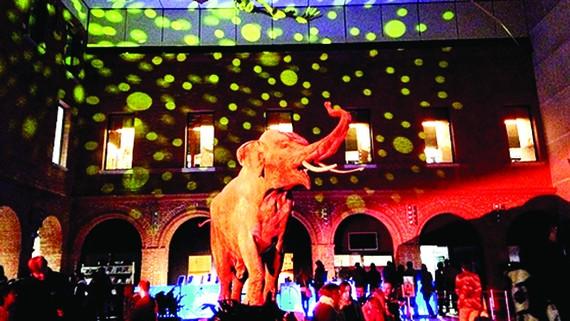 Đêm bảo tàng châu Âu