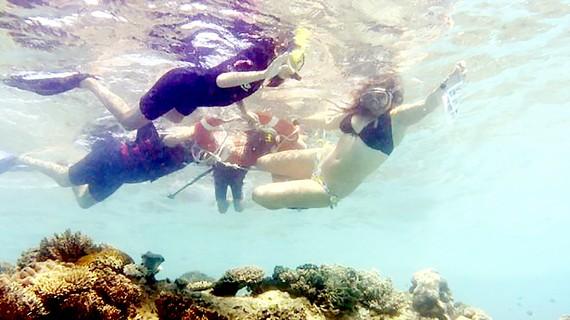 Australia bảo vệ du khách thăm san hô