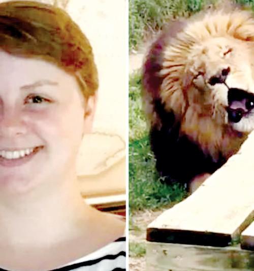 Sư tử tấn công khiến nhân viên vườn thú thiệt mạng