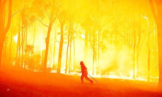 Cháy rừng tại bang New South Wales
