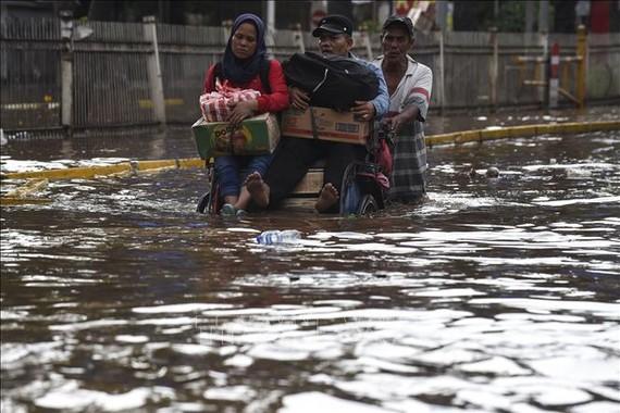 Mưa lũ hoành hành Indonesia