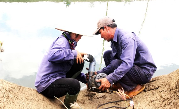 Thủy điện An Khê-Ka Nak xả nước cứu hàng trăm ha lúa, hoa màu cho người dân xã Tây Thuận, huyện Tây Sơn, tỉnh Bình Định. Ảnh: NGỌC OAI