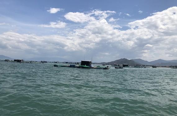 Phát triển nghề nuôi thủy sản trên biển Khánh Hòa
