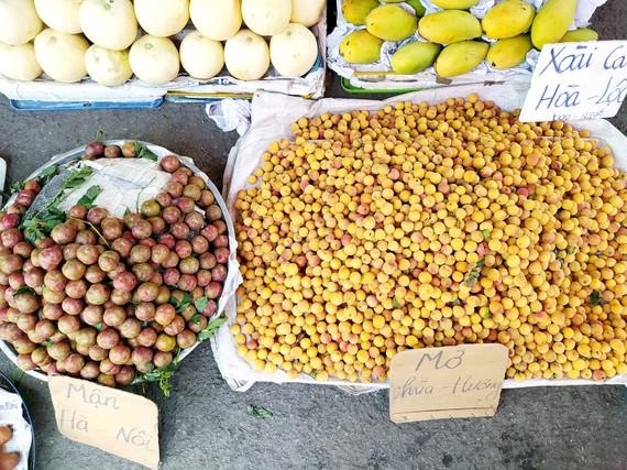 Mùa này, mơ - mận hậu được bày bán khắp các chợ đặc sản miền Bắc ở TPHCM