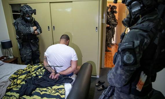 Cảnh sát Liên bang Australia bắt giữ một nghi phạm trong Chiến dịch Ironside chống tội phạm có tổ chức. Ảnh: REUTERS