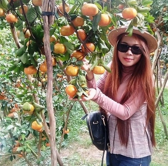 Agri-tourism products to lure more visitors