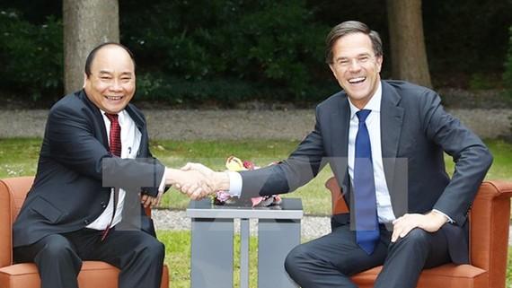 Thủ tướng Nguyễn Xuân Phúc hội đàm với Thủ tướng Vương quốc Hà Lan Mark Rutte. Ảnh: TTXVN