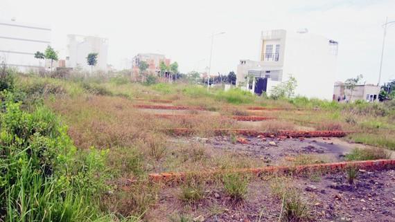 Một thửa đất thổ cư trên đường Lò Lu, quận 9. Ảnh: TRÀ GIANG
