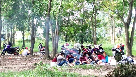 Các nhóm sinh viên tự tổ chức tiệc ăn uống và nướng đồ ăn ngoài trời, bên cạnh Trung tâm Đại học Pháp, thuộc làng Đại học Quốc gia TPHCM