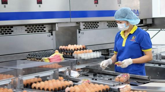Doanh nghiệp ứng dụng dây chuyền sản xuất tự động