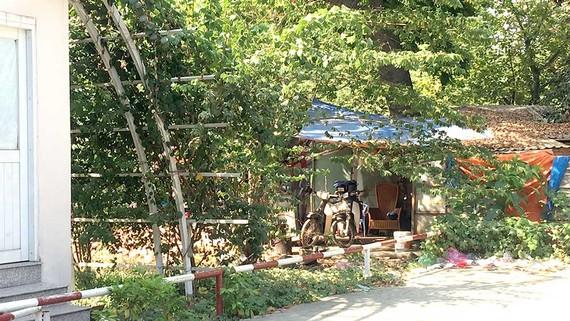 Khu nhà lụp xụp giữa công viên