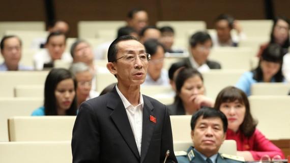 Đại biểu Trần Hoàng Ngân (TPHCM) phát biểu. Ảnh: TTXVN