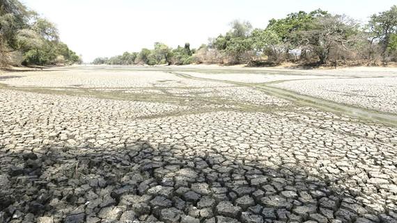 Hạn hán nhiều nơi do biến đổi khí hậu