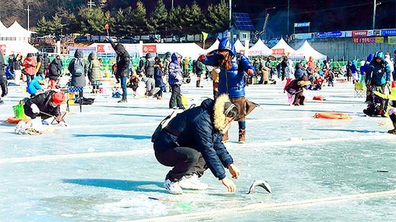 Lễ hội câu cá trên băng Hwacheon Sancheoneo