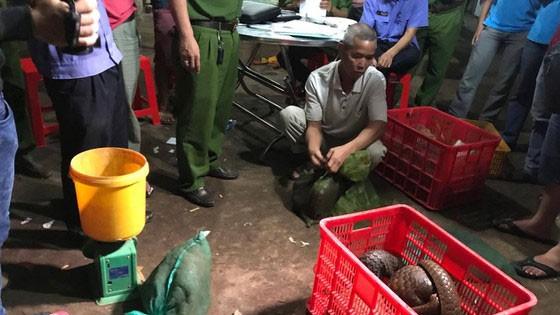 Lực lượng chức năng triệt phá một điểm buôn bán động vật hoang dã