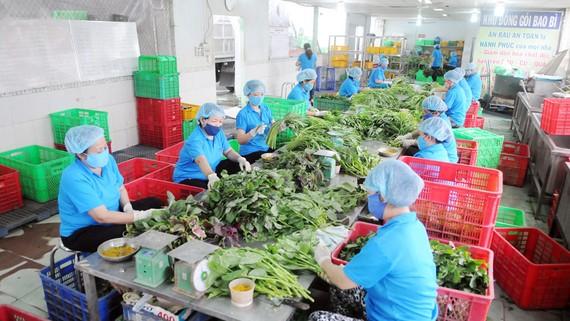 Chế biến rau cung ứng tham gia BOTT tại HTX Phước An, huyện Bình Chánh, TPHCM. Ảnh: CAO THĂNG