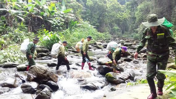 """Hành trình vào rừng của """"biệt đội"""" giải cứu thú rừng"""