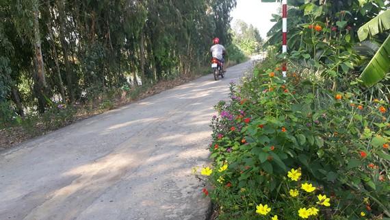 Một tuyến đường tại Long An nhờ thực hiện Chương trình Nông thôn mới đã được bê tông hóa khang trang, sạch đẹp