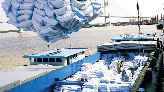 EVFTA được xem là cơ hội vàng cho nông sản xuất khẩu Việt Nam. Ảnh: TTXVN