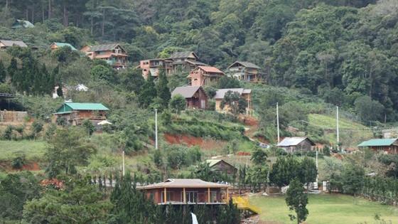 Hàng chục căn nhà xây dựng trái phép trên đất rừng. Ảnh: ĐOÀN KIÊN