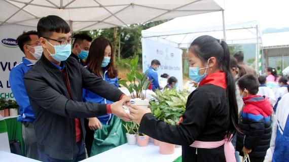 Đổi rác thải lấy cây xanh tại Chương trình Quỹ một triệu cây xanh cho Việt Nam