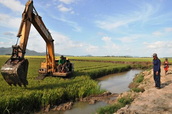 Cần giảm đê bao ngăn lũ để sản xuất lúa vụ 3 (thu đông) ở ĐBSCL, nhằm tích trữ nước lũ