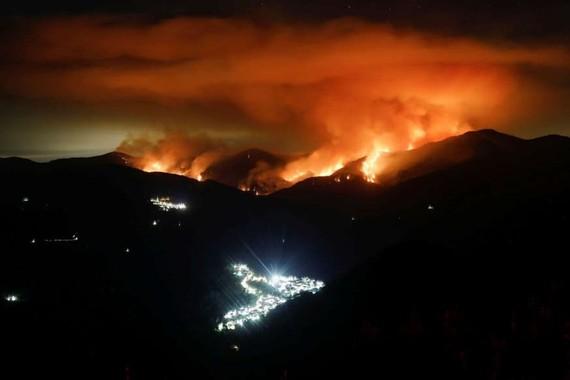 Cháy rừng trên núi Sierra Bermeja, thuộc tỉnh Malaga, Andalusia, Tây Ban Nha. Ảnh: REUTERS