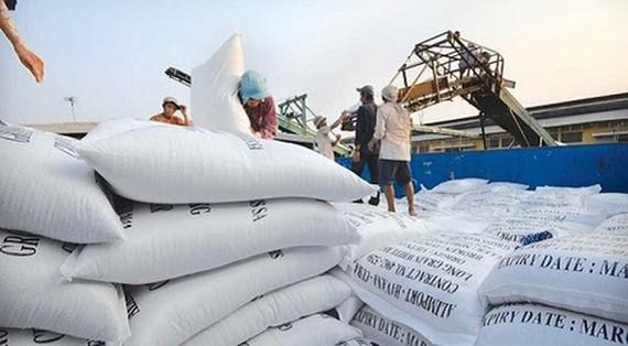Tạm dừng ký hợp đồng mới xuất khẩu gạo