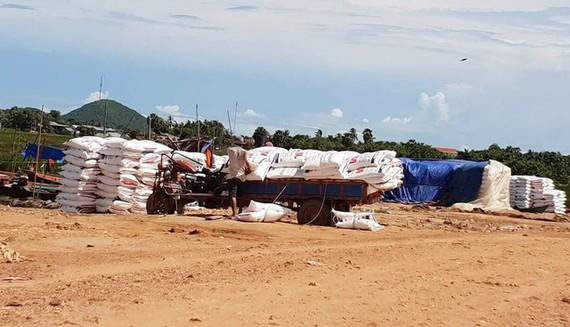 Ngăn chặn, xử lý nghiêm nạn buôn lậu khẩu trang và gạo qua biên giới