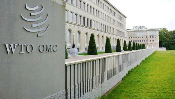 Theo WTO, thương mại toàn cầu có thể giảm từ 13% đến 32% trong năm nay.