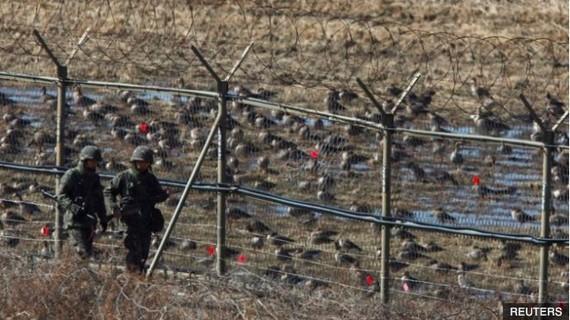 Hàn Quốc nối lại dự án tại DMZ