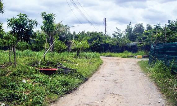 Dù biết quy hoạch thành khu đô thị nhưng nhiều người sẵn sàng chuyển nhượng bằng giấy tay nhiều thửa đất tại bán đảo Thanh Đa để chờ đền bù hay thay đổi quy hoạch. Ảnh: TR. GIANG