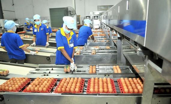 Trứng gà thành phẩm của Công ty cổ phần Ba Huân. Ảnh: CAO THĂNG