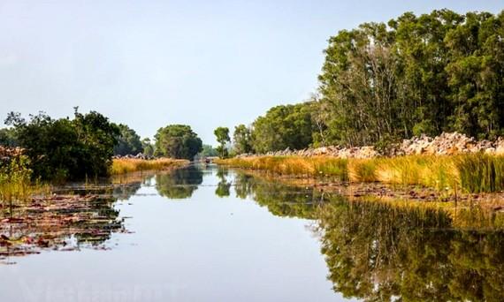 Vườn quốc gia Tràm Chim có diện tích 7.313ha.