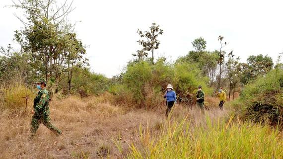 Bộ đội Biên phòng tỉnh Bình Phước trên đường tuần tra biên giới Ảnh: HOÀNG BẮC