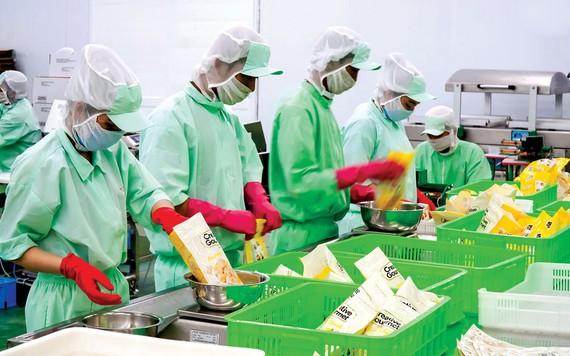 Chế biến trái cây và rau củ quả xuất khẩu tại Công ty Thuận Phong. Sản phẩm xuất khẩu sang các nước Mỹ, Nhật, Hàn Quốc, Australia, châu Âu… Ảnh: HOÀNG HÙNG