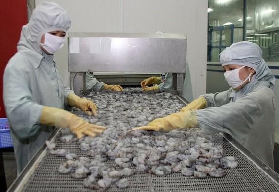 Châu Á sẽ là thị trường tiêu thụ mới nổi ngành tôm