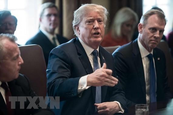Tổng thống Mỹ Donald Trump (giữa) chủ trì cuộc họp nội các. (Nguồn: AFP/TTXVN)