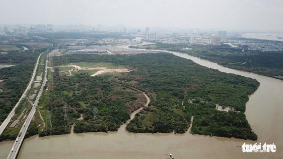 Khu đất 30ha của Công ty Tân Thuận bán cho Công ty Quốc Cường Gia Lai ở xã Phước Kiển, huyện Nhà Bè, TP.HCM - ẢNH: QUANG ĐỊNH