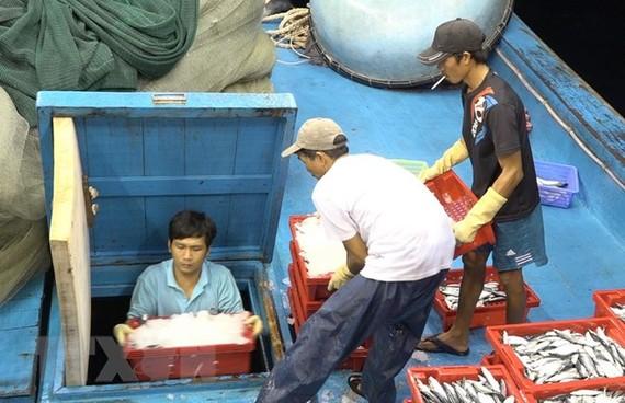 """""""Thẻ vàng"""" xuất khẩu hải sản: Tìm cơ hội từ thách thức"""