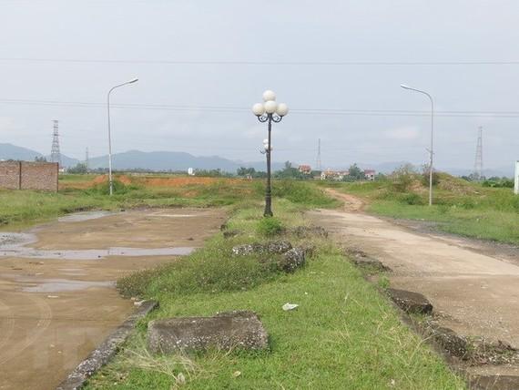 Thanh tra Chính phủ yêu cầu xử lý các sai phạm đất đai tại Cần Thơ