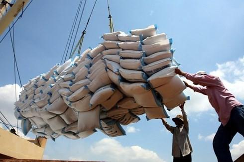Xuất khẩu gạo của Việt Nam có dấu hiệu khởi sắc trở lại. (Ảnh: KT)