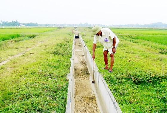 Cuối kênh N36 tại xã Tân Sơn cạn không giọt nước