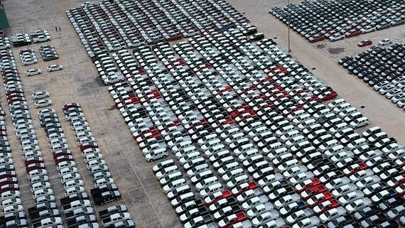 Ô tô tại một kho bãi chuẩn bị cung ứng cho khách hàng ở TPHCM. Ảnh: THÀNH TRÍ