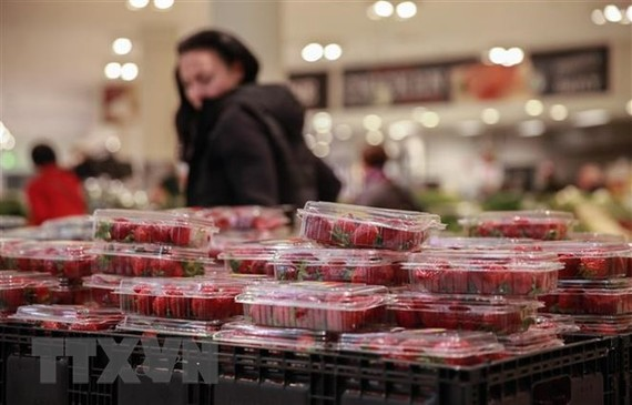 Dâu tây được bày bán tại một siêu thị ở Sydney, Australia ngày 20/9. (Ảnh: THX/TTXVN)