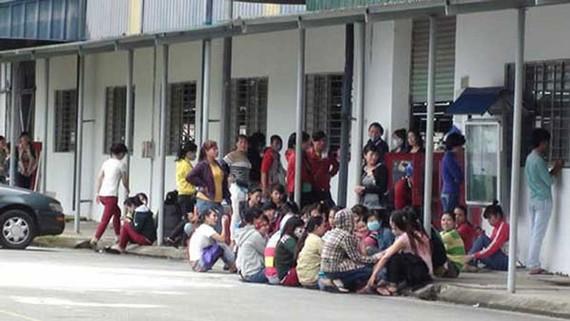 Đà Nẵng: Chủ doanh nghiệp bỏ về Hàn Quốc, nợ bảo hiểm 500 công nhân