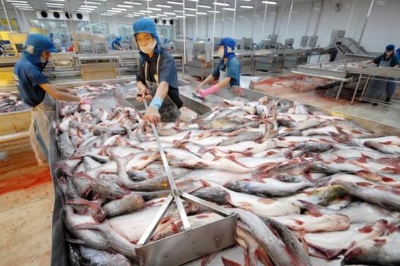Xuất khẩu thủy sản đạt kỷ lục với 9 tỷ USD